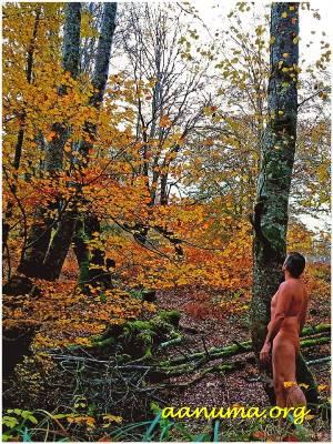 El hombre forma parte de la Naturaleza